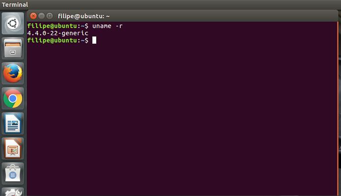 É possível consultar a versão do kernel com o comando uname -r, sem as aspas (Foto: Reprodução/Filipe Garrett)