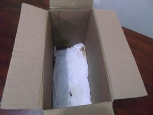 Menina de cerca de 5 dias de vida foi encontrada dentro de caixa de papelão no Oeste de SC (Foto: CBM/Divulgação)