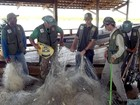 Fiscais apreendem quase 50 mil kg de pescado durante a piracema no TO