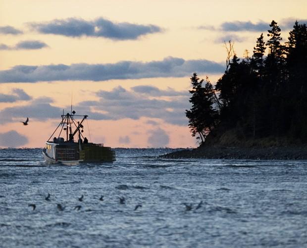 Barco pesqueiro sai em busca de lagostas, crustáceos e peixes em região costeira do Canadá (Foto: Andrew Vaughan/The Canadian Press/AP)