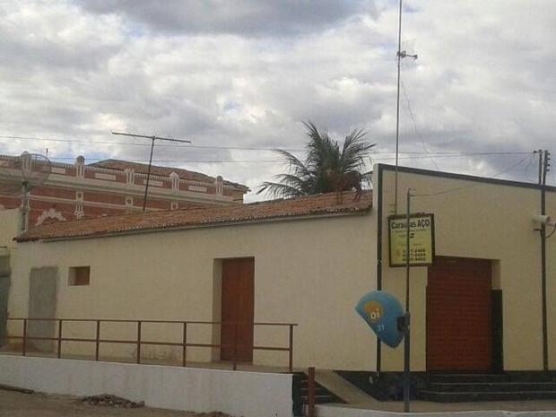 Bode subiu no telhado no município de Caraúbas, no RN (Foto: Tiago Araruna/Arquivo Pessoal)