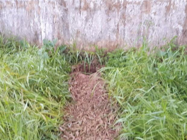 Detentos fugiram por buraco na madrugada de sábado (25) (Foto: Divulgação)