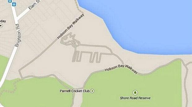 Imagem do felino foi desenhada na baía Hobson (Foto: Reprodução/Google Maps)