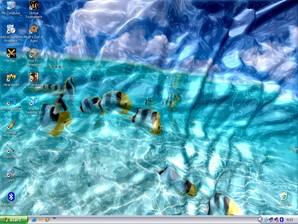 Desktop aquático