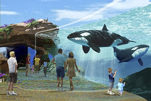 Ilustração mostra como serão novas instalações do parque SeaWorld em San Diego (Foto: SeaWorld/Divulgação)