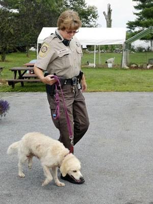 A policial Marlisa Embrey segura o cachorro Henry, que salvou seu dono do ataque de um urso nos EUA (Foto: The Winchester Star, Eddie Richard/AP)