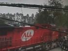 Trem atinge caminhão que parou nos trilhos e motorista escapa ileso; vídeo