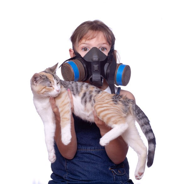 Funny, silly shot of a kid with allergies holding a cat wearing a gas mask (Foto: Getty Images/iStockphoto)