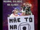 Bode 'gaiato' criado por recifense vira mania e atinge multidão de fãs na web