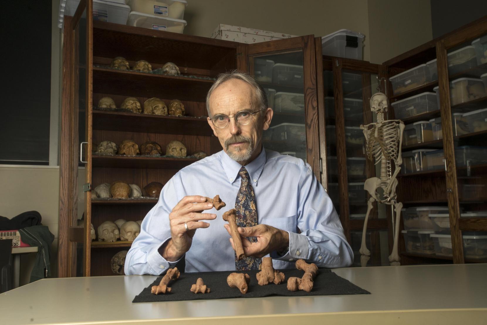 Kappelman com reproduções 3D dos ossos de Lucy (Foto: Universidade do Texas em Austin)