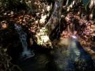 Conheça as belezas naturais do Parque Estadual do Lajeado
