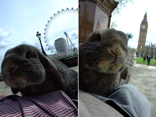 Jared em Londres; em frente à roda-gigante London Eye (à esq.) e ao Big Ben (à dir.) (Foto: Korrasut Khopuangklang/Arquivo pessoal)