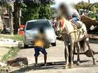Pará possui 224 mil crianças e adolescente trabalhando, diz MTE