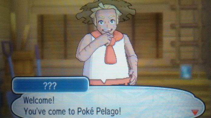 Pokémon Sun e Moon: use o Poké Pelago para somar Beans rapidamente (Foto: Reprodução / Thomas Schulze)