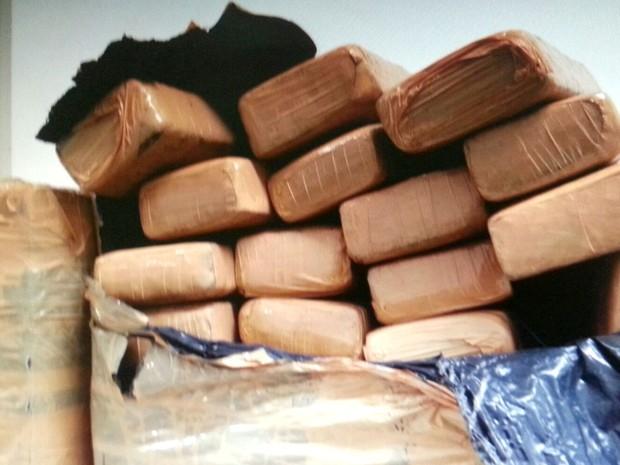 Maconha estava empacotada em lotes quando foi encontrada em Louveira (Foto: Reprodução / EPTV)