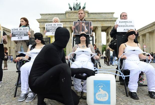 Grupo fez simulação de como as indústrias retiram leite das vacas (Foto: John Macdougall/AFP)