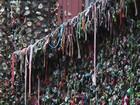 'Parede de chiclete' de Seattle passa por limpeza