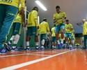 Na reapresentação do Palmeiras, Edu Dracena e Mina fazem trabalho físico