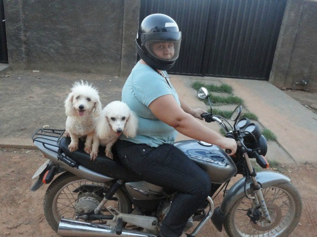 As duas poodles passeiam de moto todos os dias e latem para os cachorros da rua fazendo inveja (Foto: Caroline Arruda Alves/Divulga&#231;&#227;o)