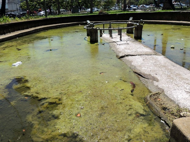 Praça do Derby também tem fonte desativada, além de jardins com plantas escassas e estátuas danificadas. Só um pequeno pedaço da praça mantém os ares imaginados por Burle Marx (Foto: Marina Barbosa / G1)