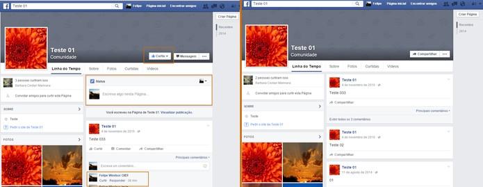 Página com usuário tradicional que curtiu (à esquerda) e mesma página com usuário banido (à direita) (Foto: Reprodução/Barbara Mannara)