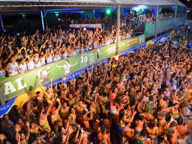 Cabo Folia 2014 - shows (Foto: Sandro Honorato / Divulgação)