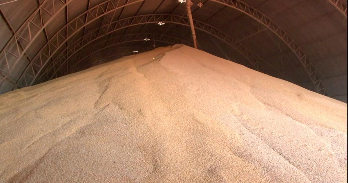 Resultado de imagem para Deficit de armazenagem de grãos no Brasil