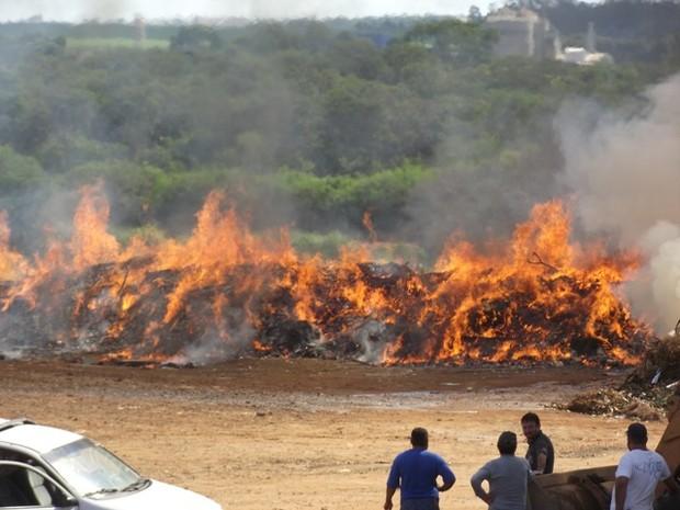 Três caminhões dos bombeiros atenderam ocorrência em Pirassununga (Foto: Ademir Naressi/arquivo pessoal)