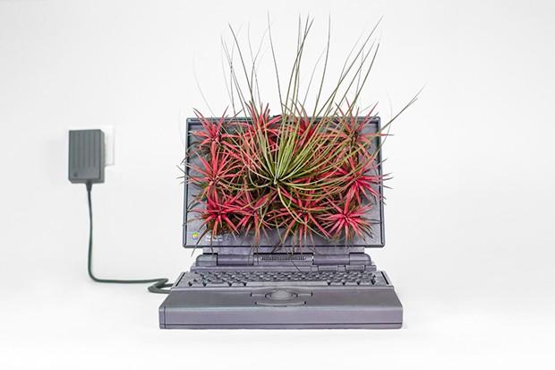 Plant Your Mac! de Christophe Guinet (Foto: Divulgação)