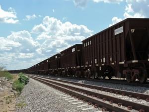 Vagões de transporte de carga estacionados ao longo da ferrovia. (Foto: Katherine Coutinho/G1)