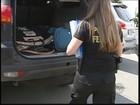 Armas e drogas apreendidas em operação estão avaliadas em R$ 9 mi