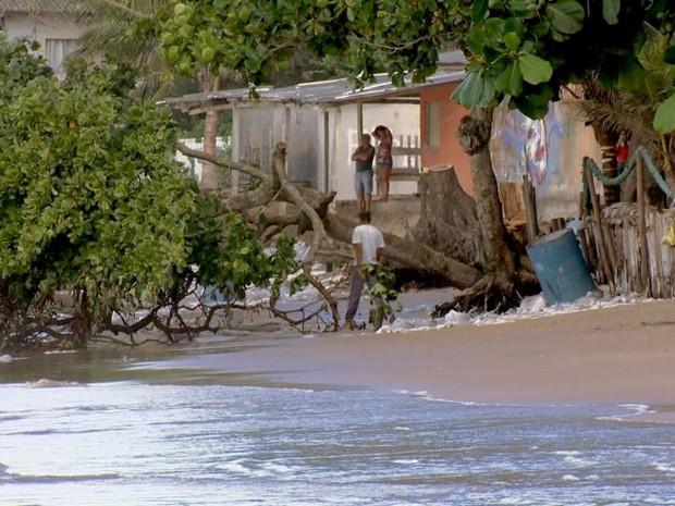 Árvores precisaram ser cortadas para não causarem acidentes (Foto: Reprodução/TV Gazeta)