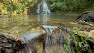 Produtores dão exemplo no uso racional da água no campo
