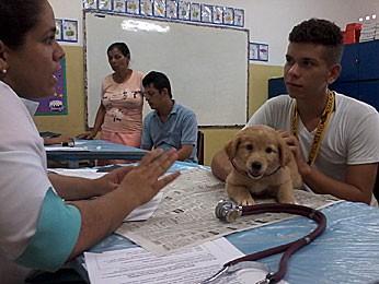 Atendimento veterinário gratuito no Ibura, Zona Sul do Recife (Foto: Lorena Tapavicsky / Prefeitura do Recife)