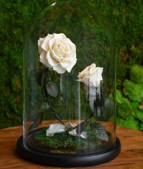 Forever Rose vende rosas de luxo em Londres e no Oriente Médio (Foto: Reprodução/Instagram)