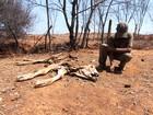 'Vidas Áridas' retrata a pior seca dos últimos 40 anos no Norte de Minas