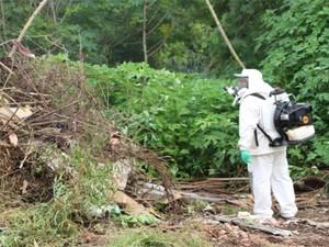 Da Vila Galli e do Jardim Serrano foram retirados 34 caminhões de possíveis criadouros do mosquito transmissor (Foto: Divulgação/Prefeitura de Votorantim)