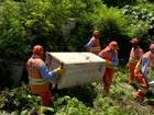 Mutirão de combate ao zika retira 30 toneladas de lixo em Vila Velha, ES