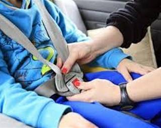 Usar a cadeirinha é obrigatório  (Foto: internet)
