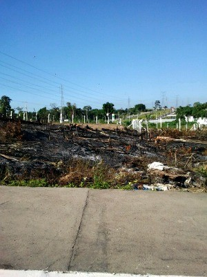 Inc&#234;ndio na vegeta&#231;&#227;o de terreno em Manaus  (Foto: Divulga&#231;&#227;o/Semmas)