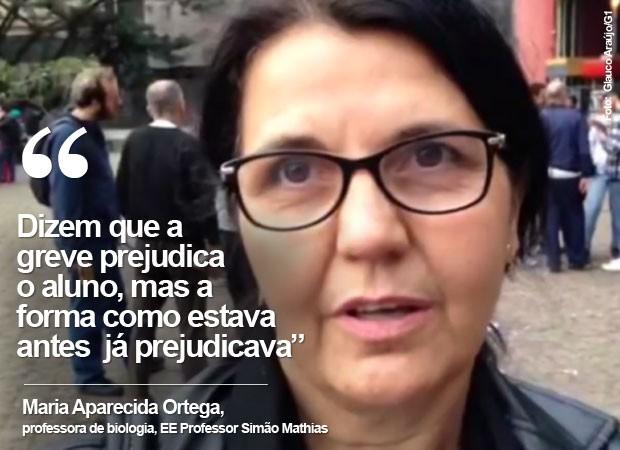 Professora Maria fala spbre o fim da greve (Foto: Glauco Araújo/G1)