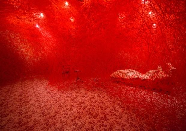 Gucci 4 Room: projeto artsy é lançado pela marca no Japão (Foto: Divulgação)