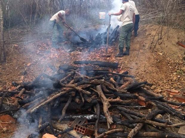 Agentes ambientais encontraram carvoaria clandestina (Foto: Juan Gomes Bastos / Inea)