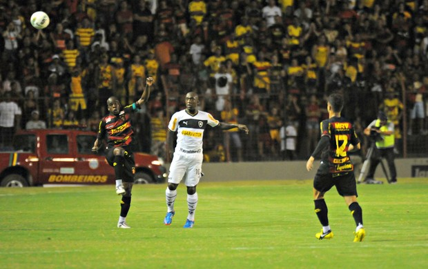Sport x Botafogo (Foto: Aldo Carneiro/Pernambuco Press)