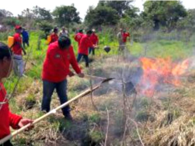 Indígenas controlando focos de incêndio com abafadores (Foto: Corpo de Bombeiros/Divulgação)