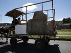 Prefeitura de Curitiba quer proibir carroças e charretes com animais