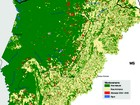 Em 2 anos, pecuária compromete 1,4 mil km² da Bacia do Alto Paraguai