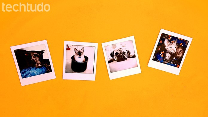 Fotos impressas pela SQ10 apresentam boa resolução e cores equilibradas (Foto: João Gabriel Balbi/TechTudo)