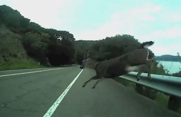 Silas Patlove sofreu acidente impressionante em estrada na Califórnia (Foto: Reprodução/YouTube/Silas Patlove)