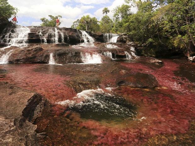 Caño Cristales, na Colômbia, conhecido como o rio das cinco cores (Foto: Jose Miguel Gomez/Reuters)